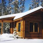 Mica Mountain Lodge Bear Cabin